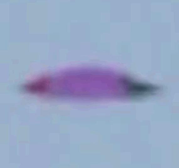 Imagen 1. Acercamiento al objeto volador.